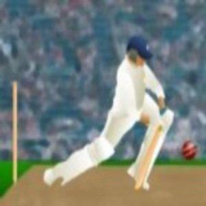 World Cup Cricket Practice