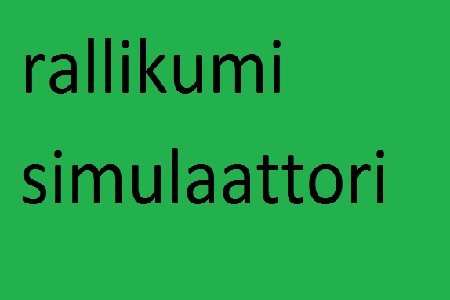 Rallikumi Simulaattori