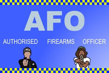 AFO (Autorizados de Armas de fogo Oficial)