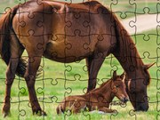 Jigsaw Puzzle Domesticated Animals