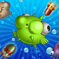 Peixe Bolha