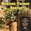 Mexicano Agricultor De Resgate