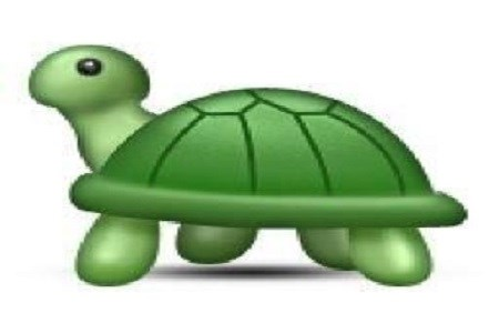 Tartaruga Busca